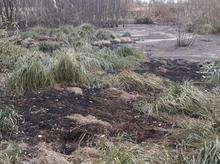 В Нижегородской области Росприроднадзор завел дело из-за утечки нефтепродуктов