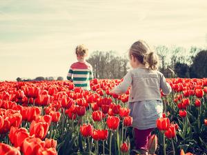 «Хотите, чтобы ребенок справлялся с жизнью? Ревите, нойте и принимайте жизнь вместе»