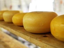 Стоимость проданной продукции нижегородского пищепрома достигла 100 млрд руб.