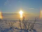 Мороз и солнце ожидают новосибирцев на выходных