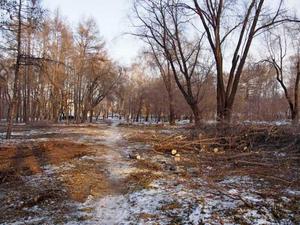 В Тракторозаводском районе Челябинска благоустроят сквер