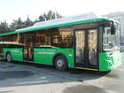 В Челябинск приехала первая партия новых автобусов, работающих на газе
