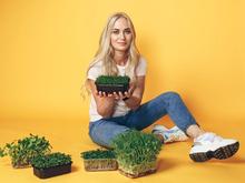 Быстрорастущий бизнес: как зарабатывают сити-фермеры