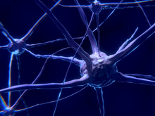 Ток вам в голову. Как электростимуляция может модулировать мозг и спасать от болезней