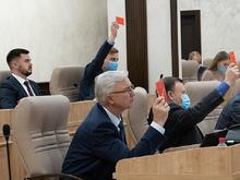 Доходы упадут, расходы урежут. Бюджет Екатеринбурга-2021 прошел первое чтение