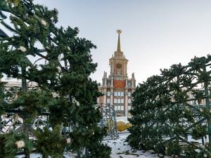 Новогодняя елка Екатеринбурга вошла в число самых дорогих в России