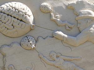 Во взрослом возрасте мозг отторгает знания, это физиология. Что делать?