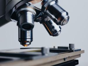 «Биоцентр СО РАН» создадут в рамках проекта «Академгородок 2.0» в Новосибирске