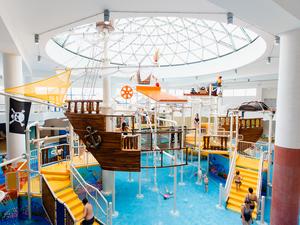 Главу компании-застройщика новосибирского аквапарка признали банкротом