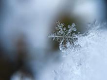 Морозы до минус 24 градусов придут на выходных в Новосибирск