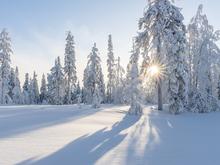 Сильно похолодает в Новосибирске к концу рабочей недели