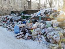 Красноярск ожидают перебои с вывозом мусора из-за суровых морозов