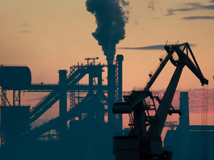 Березовая роща, завод Воровского, Широкая речка. Сразу 11 спорных участков сменили статус