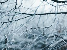 В Нижегородской области ожидаются морозы до -30°С