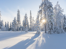 Полюбите холод, но утеплите руки и шею. Как с легкостью и удовольствием пережить морозы
