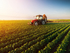 Потянуло к земле. В Екатеринбурге растет спрос на агробизнес