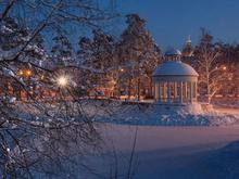 Мэрии Челябинска пригрозили антимонопольным делом за нарушения в парке Гагарина