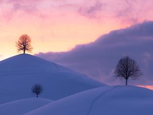 Холода снова вернутся в Новосибирск к концу недели