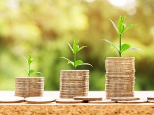 Нижегородский бизнес не закрылся в 2020 году благодаря льготным кредитам