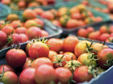 Новый вид доставки предложил Россельхозбанк крупному фермерскому маркетплейсу