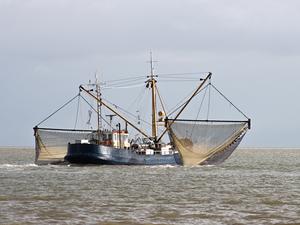 На Таймыре утвердили квоты на промышленный вылов рыбы