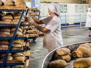 Красноярским мукомолам и хлебопекам утвердили господдержку