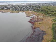 Мэр Копейска допустил исчезновение озера Курочкино, где находится популярная база отдыха