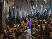 Ресторан «Парк культуры» представляет февральский вечер классической музыки