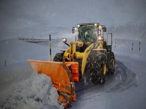 За ночь в Красноярске выпала половина всего февральского снега