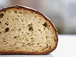 Новый вид господдержки окажут новосибирским пекарням и мукомольным предприятиям