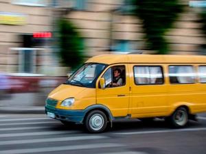Власти предупредили новосибирских перевозчиков об ужесточении проверок