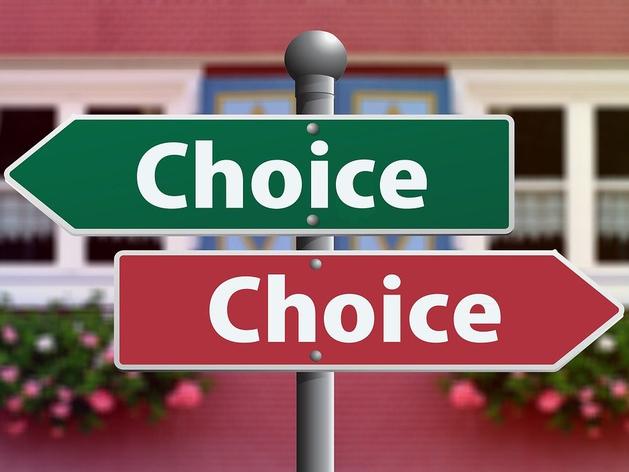 «Альтернатива — вещь приятная, но ей не оплатить ипотеку». Как выбор вредит нам