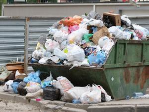 Куча больше пирамиды Хеопса. Экологи сосчитали, сколько мусора выбрасывают в Екатеринбурге