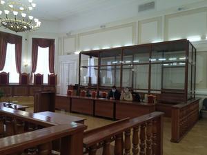 Суд запретил нижегородской журналистке Наталье Резонтовой пользоваться интернетом