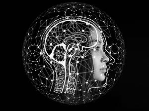 «Ваши воспоминания не имеют ничего общего с реальностью». Почему мозг человека — не машина