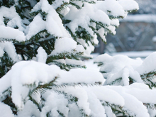 Снег в городе — никаких денег. Шалабаев лишил премий глав районов