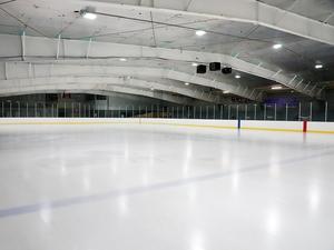 Еще 2,5 миллиарда на строительство ледовой арены попросили новосибирские власти