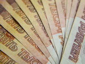 Почти 230 млн федеральных денег получит Новосибирская область на ПЛП