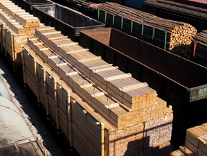 Ковид VS Лесники: в КрасЖД объяснили проблемы с поставками красноярского леса в Китай