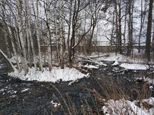 На птицефабрику Андрея Косилова наложили многомиллионный штраф за ущерб экологии