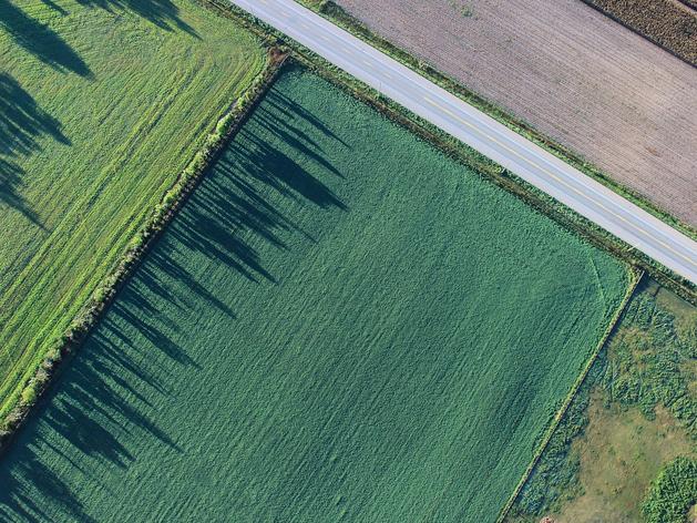 Земля для дома мечты. Как купить участок по кадастровой стоимости или еще дешевле