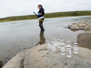 На Таймыре стартовала еще одна экспедиция: ученые ищут следы дизтоплива
