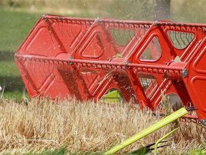 Малые фермерские хозяйства Красноярского края получат полмиллиарда рублей господдержки