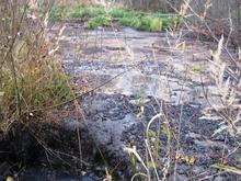 Ущерб на 1,9 млн. РЖД просят компенсировать Нижегородской области разлив нефтепродуктов