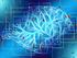 Новосибирская область усилит работу по развитию искусственного интеллекта