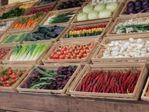 В Челябинской области замедлился рост цен на овощи, сахар и макароны