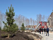 Озеленение за 10 млн руб.: в Челябинске сквер возле арены «Трактор» достроят к 1 августа