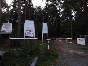 Представитель заксобрания попросил закрыть делопроизводство о границах Челябинского бора