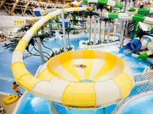 Суд начал реализацию имущества главы компании-застройщика новосибирского аквапарка