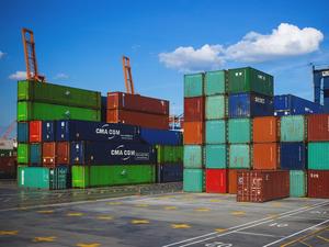На $115,8 миллионов экспортировала продукции АПК Новосибирская область
